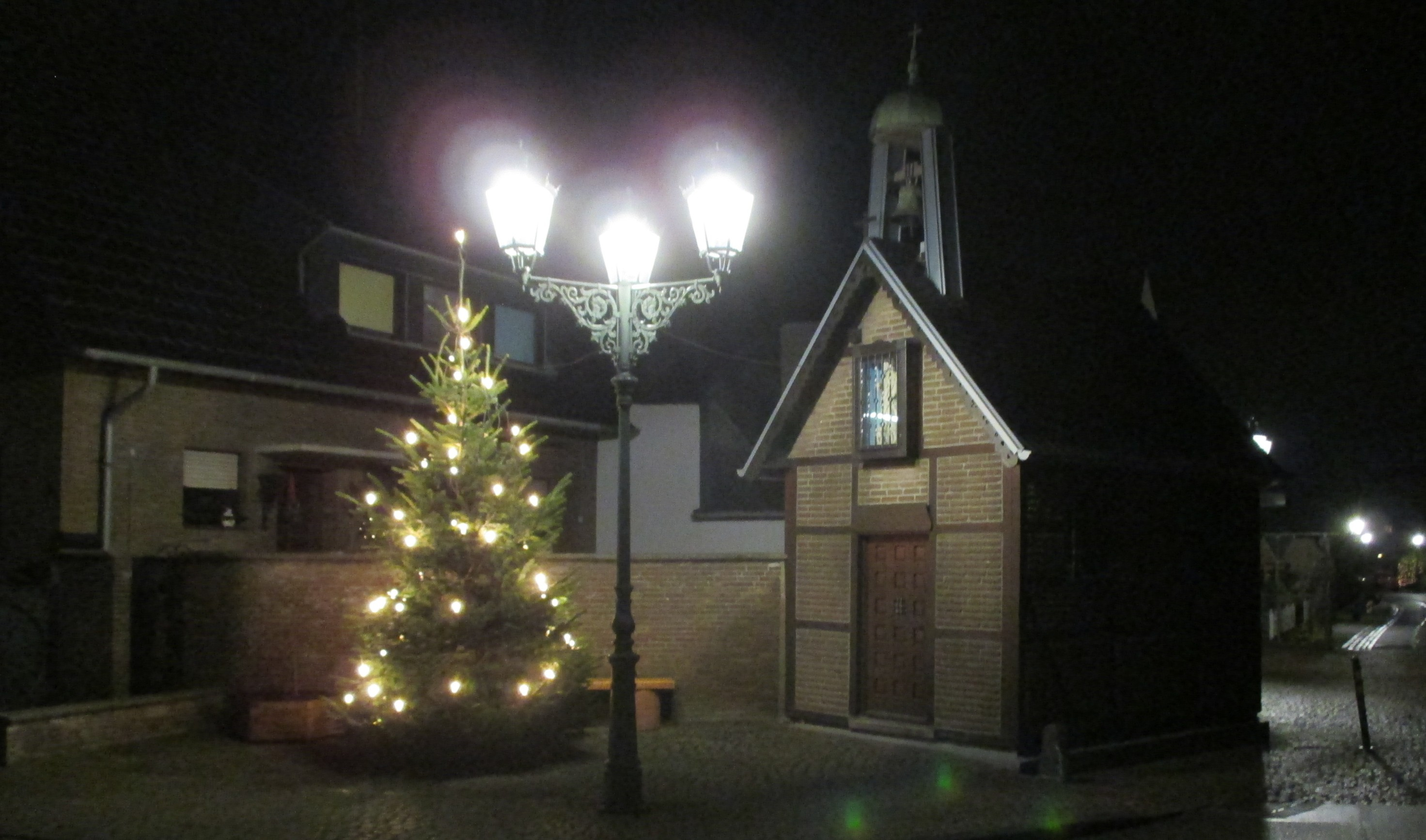 Der Weihnachtsbaum ist erleuchtet!
